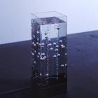 C.F.Bubble in Water